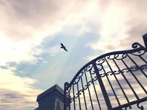 Photo by photobucket.com